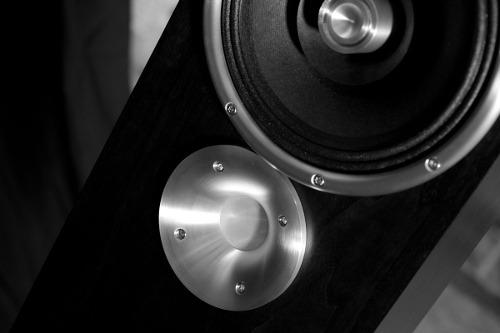 Zu Audio Druid gros plan